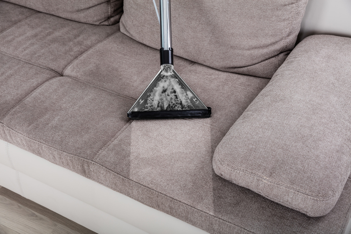Maintain upholstered furniture with regular cleanings.
